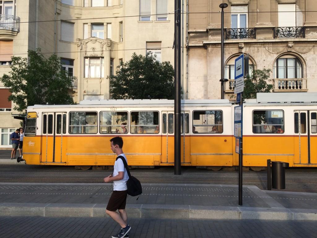 Le tramway, inauguré en 1866, est l'un des réseaux les plus longs au monde.