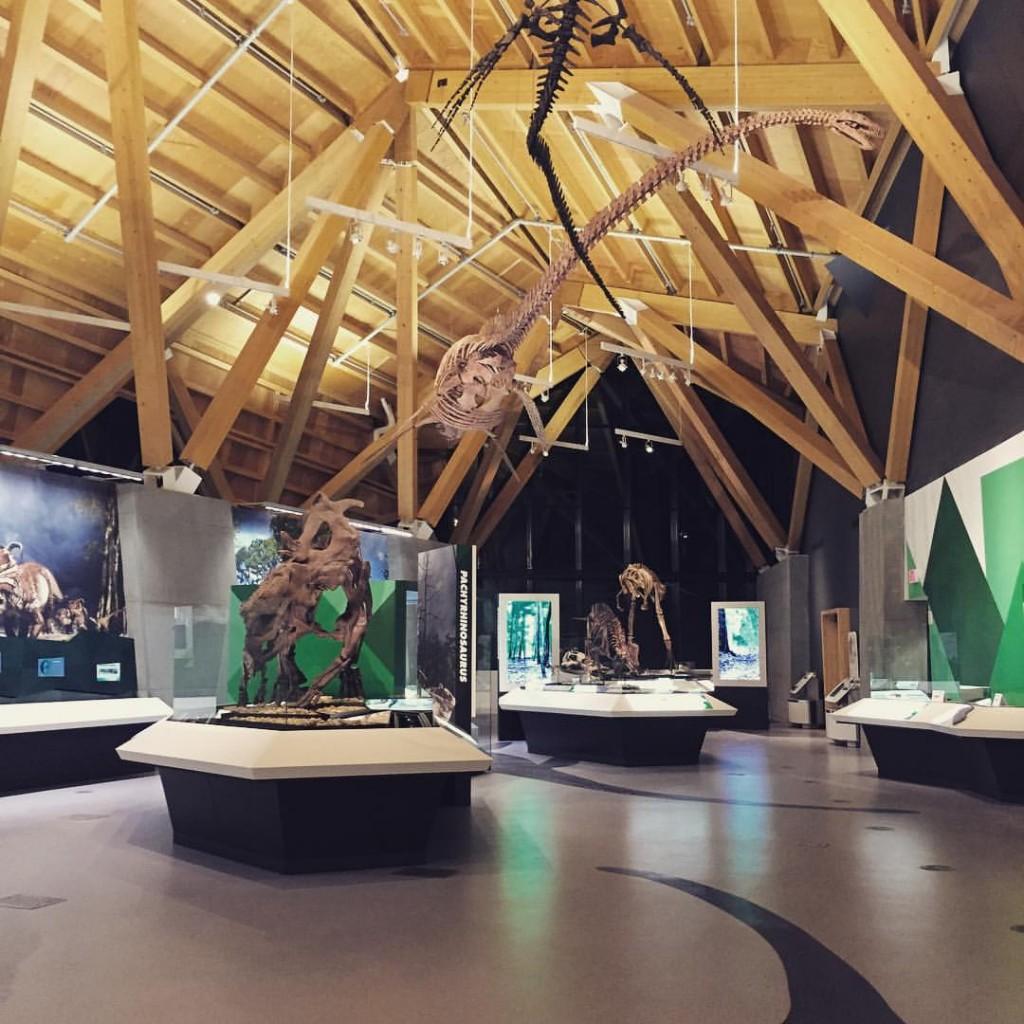 """alt=""""philip-j.-currie-dinosaur-museum"""