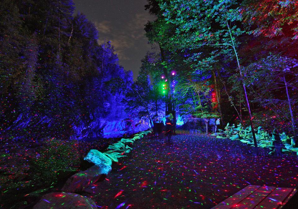 Photo: forestalumina.com