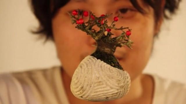 """alt=""""air-bonsai"""""""