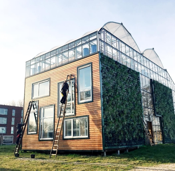 Photo: Instagram Greenhouse living
