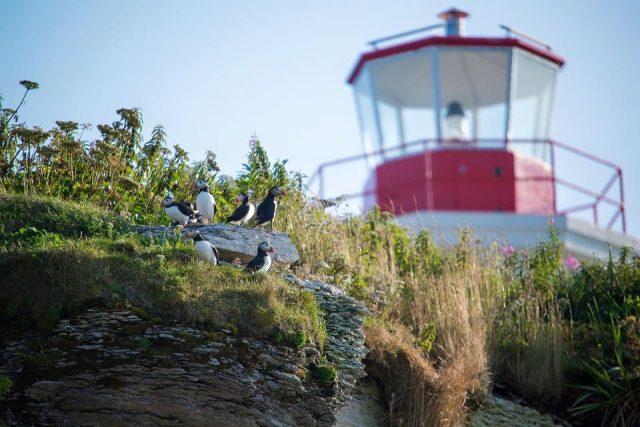Photo: Facebook Auberge de l'île aux Perroquets.