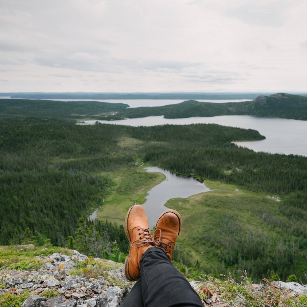 Photo: Facebook Parc national Terra-Nova.