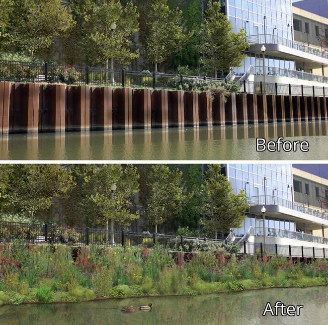 Projet de jardins flottants sur la rivière Chicago. Photo: prise d'écran Kickstarter.