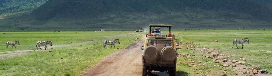 Safari en Tanzanie, le voyage d'une vie