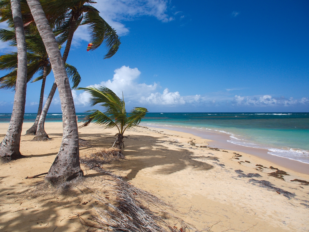 Las Terrenas, République Dominicaine. Photo: Šarūnas Burdulis, Flickr