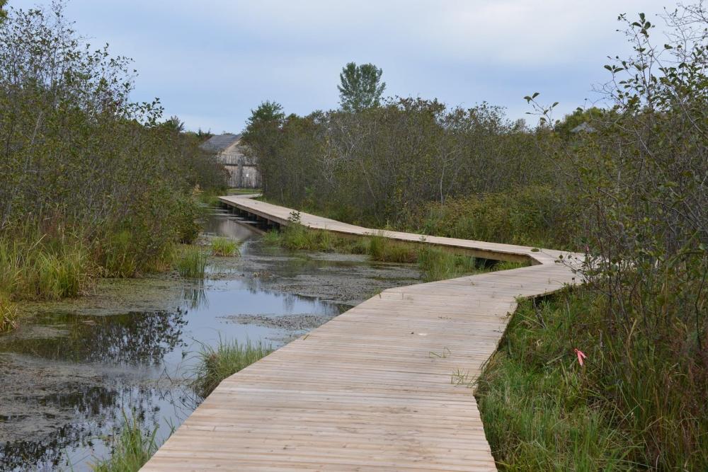 Photo: Facebook Les Amis de la réserve de faune du Lac Saint-François
