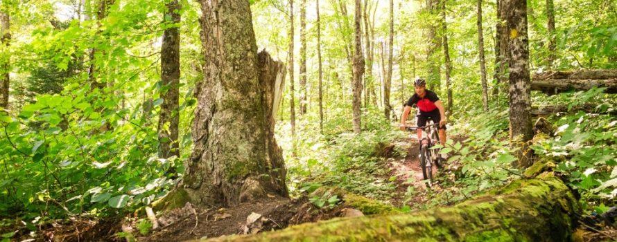 Vélo de piste en montagne à la  Montagne du Diable. Photo: Facebook Parc régional Montagne du Diable