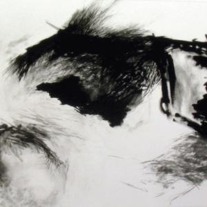 Sommes-nous ensemble entravés, no.1, Renée Lavaillante, 1990. Technique mixte sur papier. 107 x 142 cm. © L'Artothèque