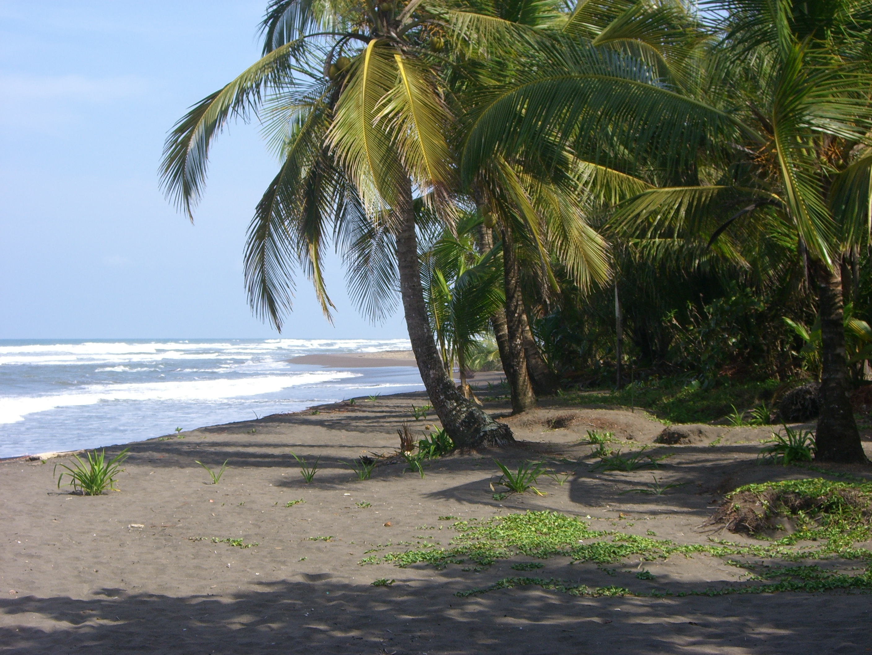 La plage de Tortuguera au Costa Rica Photo: Pixabay