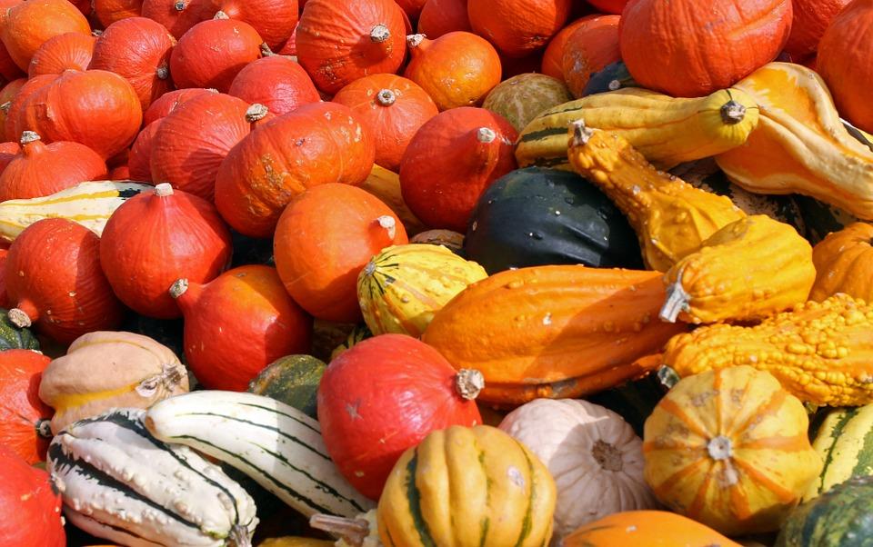 Les citrouilles et courges du Québec des aliments hauts en couleurs et en saveurs Photo: Pixabay