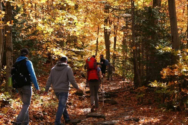 Randonnée dans les sentiers du parc national d'envrionnement Sutton. Photo: Facebook Parc national d'environnement Sutton.