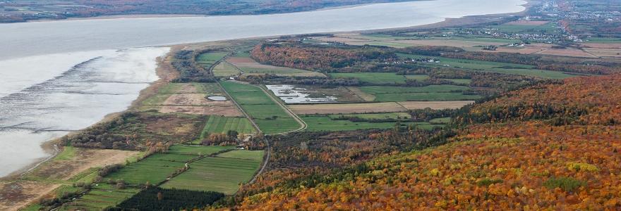 La réserve de Cap Tourmente dans ses couleurs d'automne. Photo : ©Environnement et Changement climatique Canada, 2015.