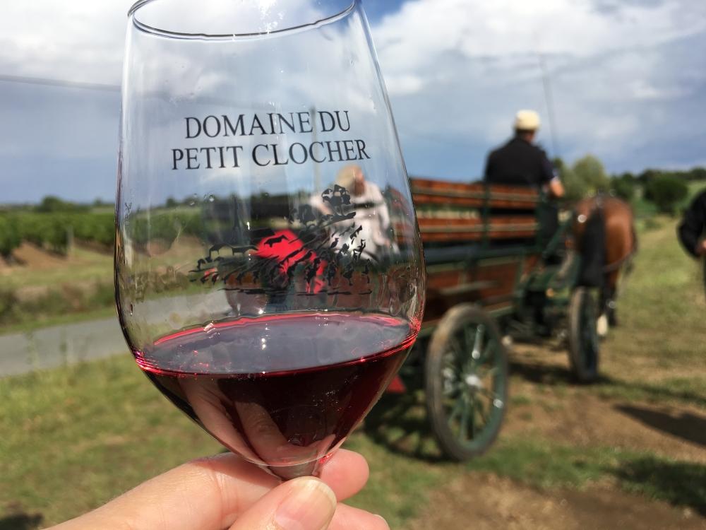 Un tour de calèche à travers les vignes du Domaine du Petit Clocher, à Cléré. Photo: Marie-Julie Gagnon