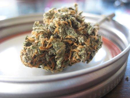 Le cannabis dans les recettes, un incontournable? Photo: Pixabay