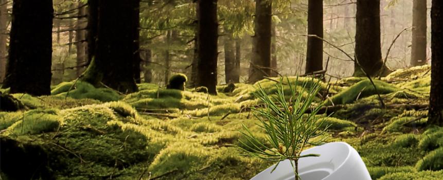 urne funeraire pour planter un arbre. Black Bedroom Furniture Sets. Home Design Ideas