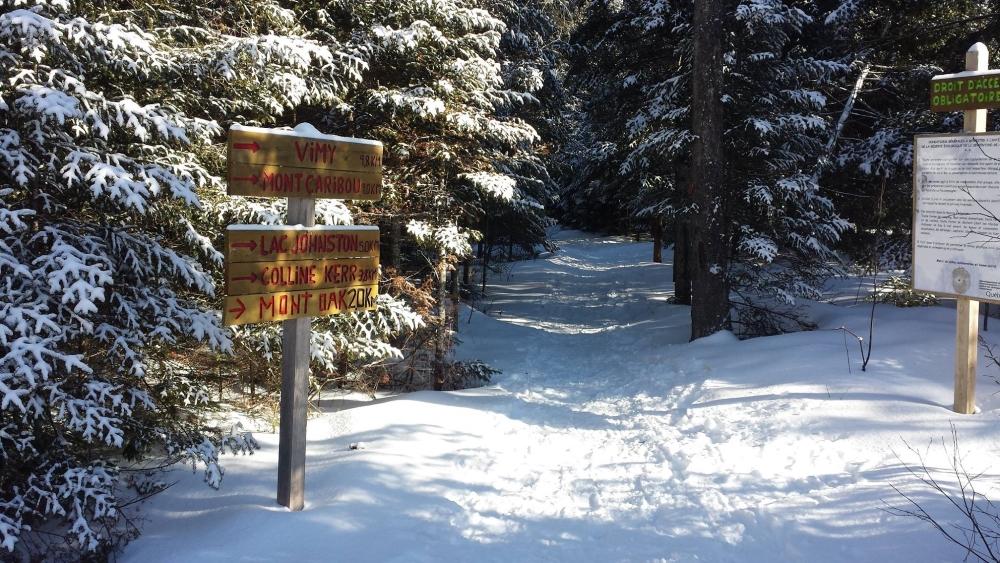 Les sentiers du Mont Oak raviront les amateurs de marche hivernale. Photo: Facebook Sentiers Pédestres des 3 Monts de Coleraine