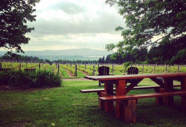 Photo: Facebook La Route des Vins de Brome-Missisquoi