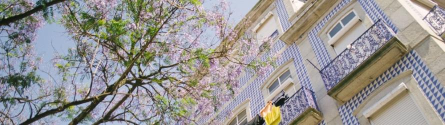Portugal: LA destination de l'heure