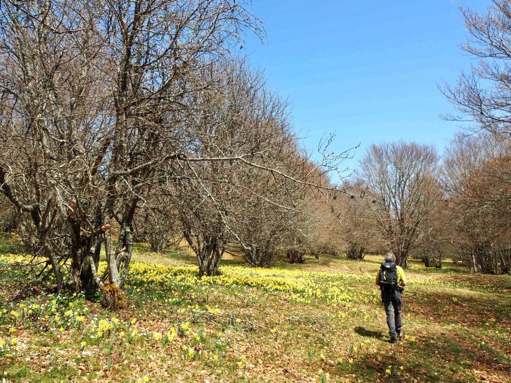 Notre guide et les fleurs! Photo: Marie-Julie Gagnon