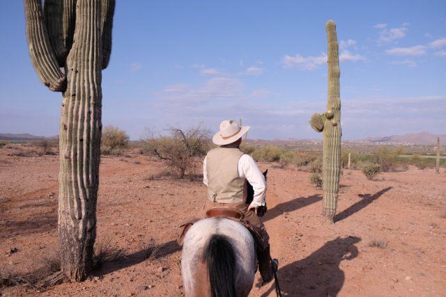 La richesse agricole de l'Arizona, malgré ses espaces désertiques, est surprenante. Photo: Véronique Leduc