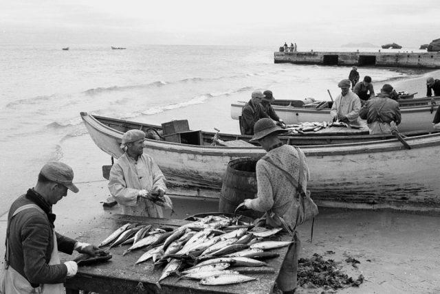 Photo: Histoire en photos de l'ONF.Bibliothèque et archives Canada