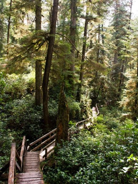 Photo: Facebook Réserve de parc national Pacific Rim