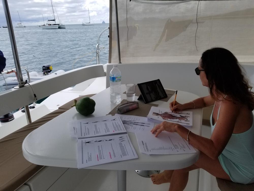 Voici une photo qui représente ma réalité de tous les jours sur le bateau. J'étudie, je fais mes chorégraphie Essentrics et nous vivons doucement...