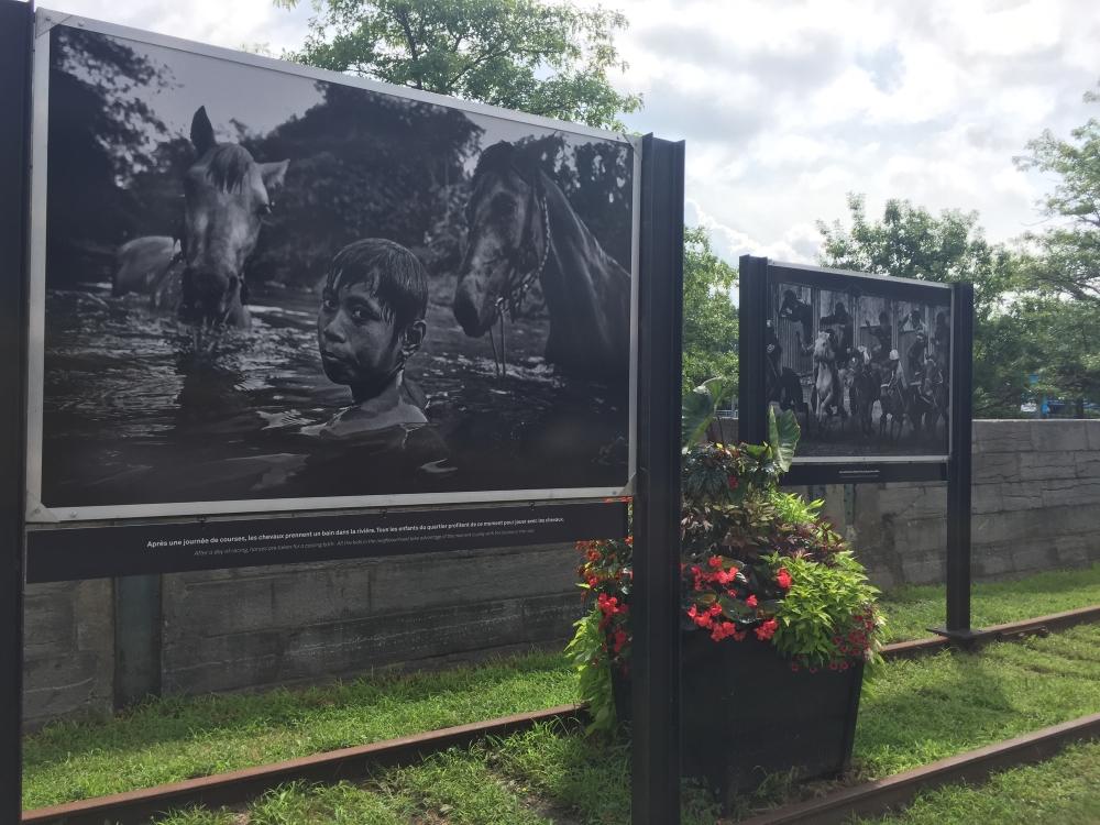 Une exposition de photos en noir et blanc sur la rue de la Commune (entre King et Queen) est offerte comme un avant-goût du World Press Photo Montréal. Photo: Claude Deschênes