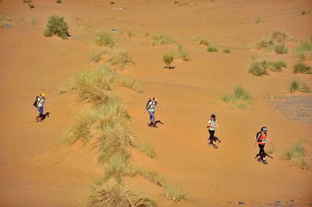 L'équipe des Panthères roses dans le désert. Photo: Désertours