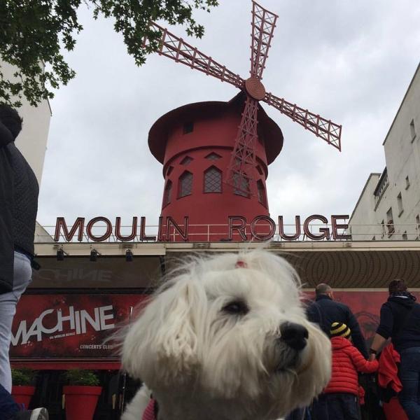 Scarlett devant le Moulin Rouge, à Paris. Photo: Pascale Lévesque