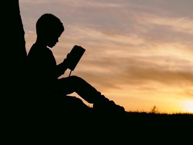 Auteur(e)