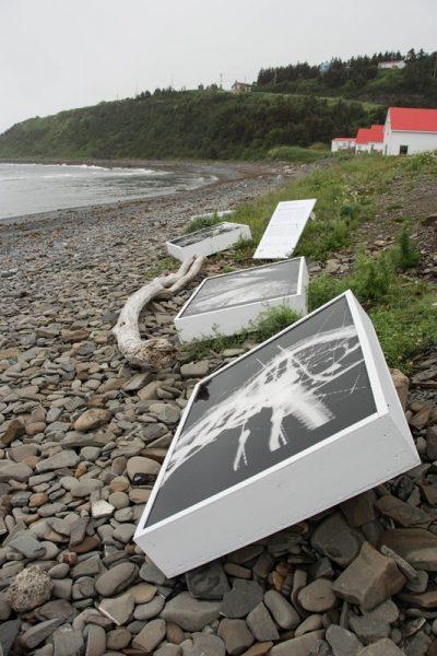 Les Rencontres de la photographie en Gaspésie, un incontournable estival - yaquelqun.fr