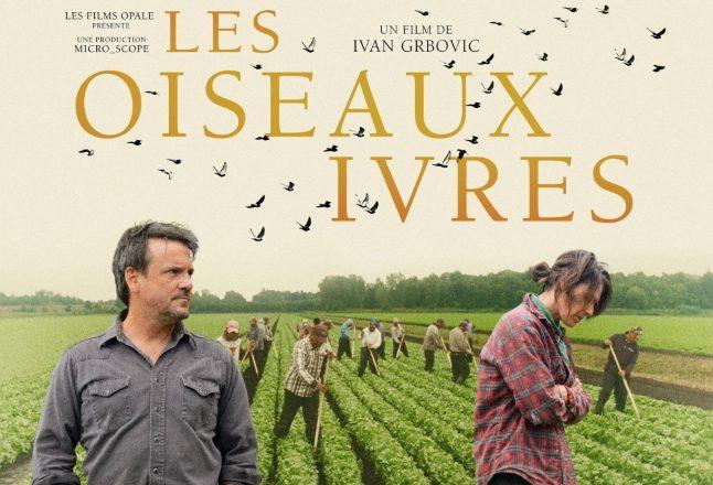 <i>Les oiseaux ivres</i> d'Ivan Grbovic, un film magnétique